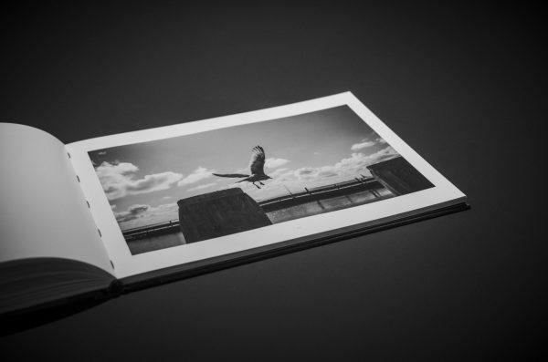 20201218_M10M8832_Books_by-Alexander-von-Wiedenbeck